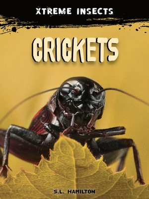 cover image of Crickets