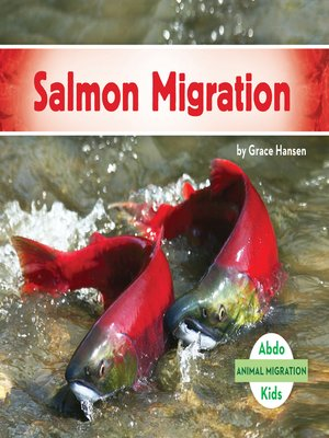 cover image of Salmon Migration