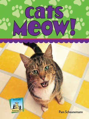 cover image of Cats Meow!