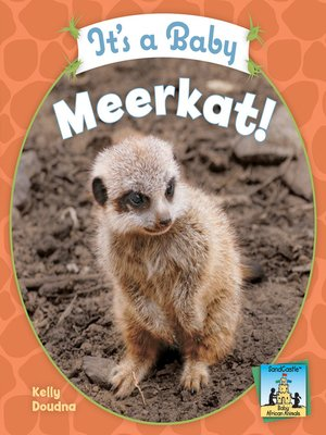 cover image of It's a Baby Meerkat!