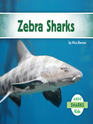 cover image of Zebra Sharks