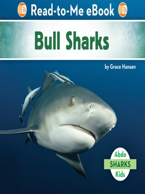 cover image of Bull Sharks