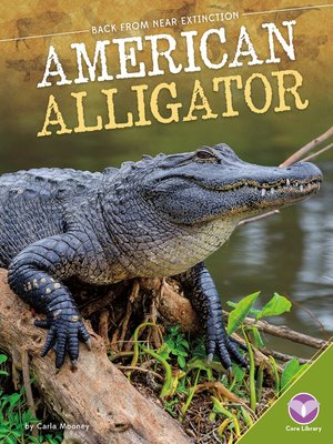 cover image of American Alligator