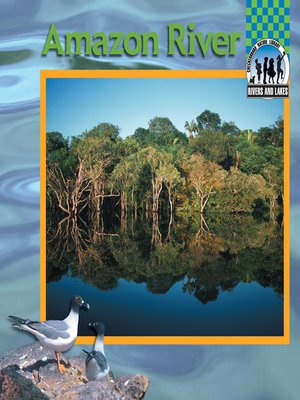 cover image of Amazon River