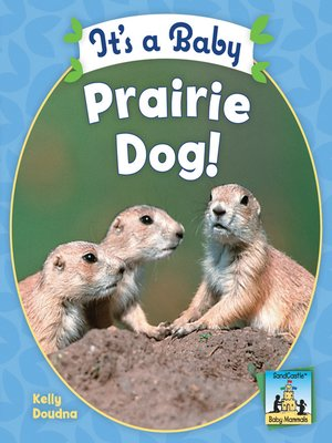 cover image of It's a Baby Prairie Dog