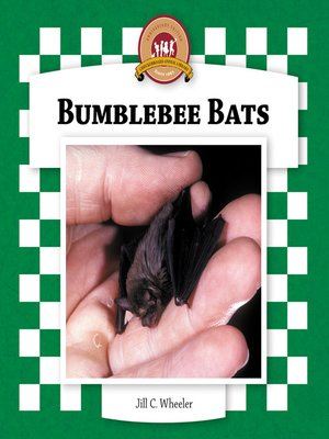 cover image of Bumblebee Bats