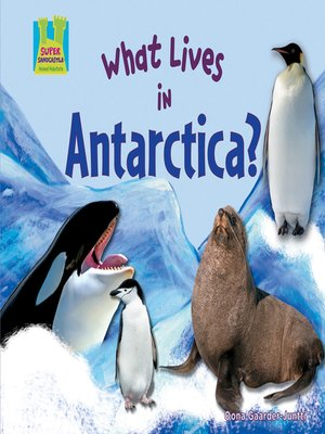 cover image of What Lives in Antarctica?