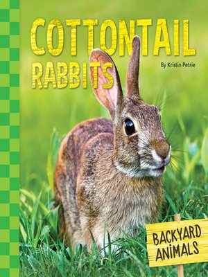 cover image of Cottontail Rabbits
