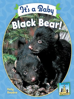 cover image of It's a Baby Black Bear