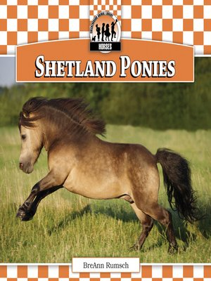 cover image of Shetland Ponies