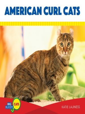 cover image of American Curl Cats