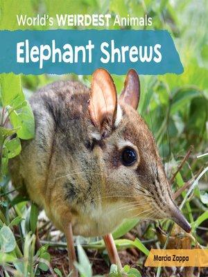 cover image of Elephant Shrews