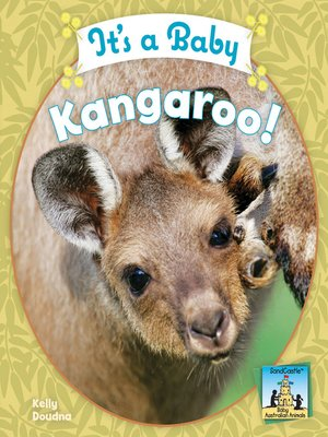 cover image of It's a Baby Kangaroo!