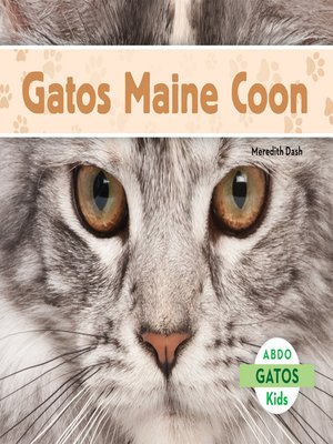 cover image of El gato Maine Coon