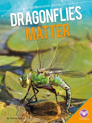 cover image of Dragonflies Matter