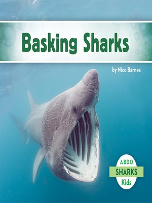 cover image of Basking Sharks