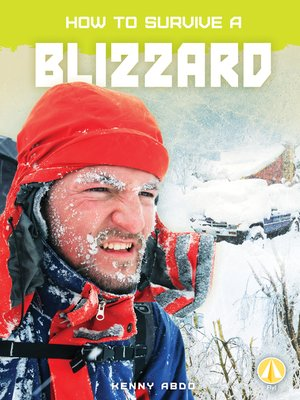 cover image of How to Survive a Blizzard