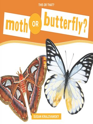 cover image of Moth or Butterfly?