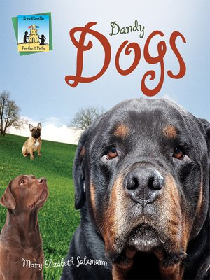 cover image of Dandy Dogs