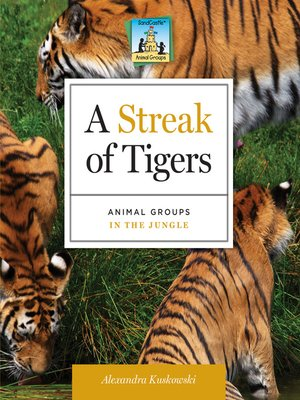 cover image of Streak of Tigers