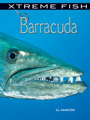 cover image of Barracuda