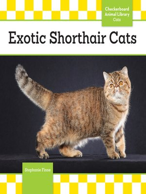cover image of Exotic Shorthair Cats