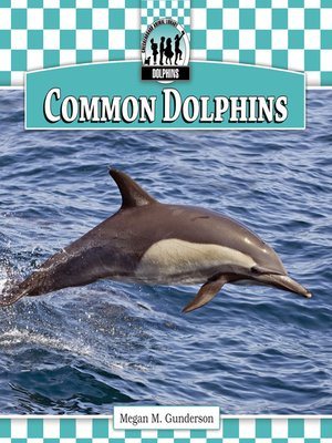cover image of Common Dolphins