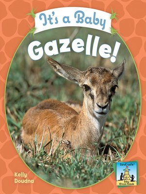 cover image of It's a Baby Gazelle!