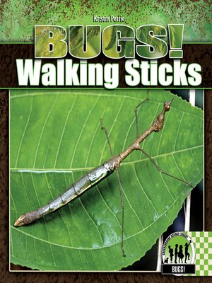cover image of Walking Sticks