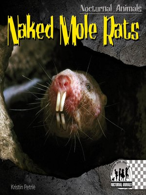 cover image of Naked Mole Rats
