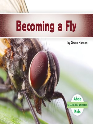 cover image of Becoming a Fly