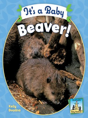 cover image of It's a Baby Beaver
