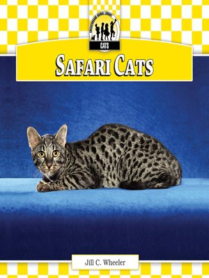 cover image of Safari Cats