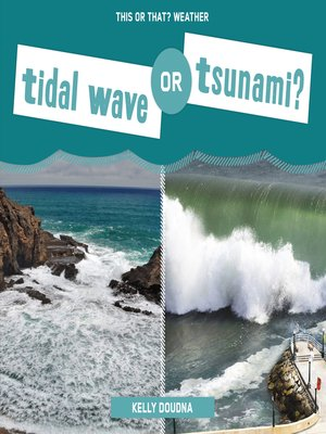 cover image of Tidal Wave or Tsunami?