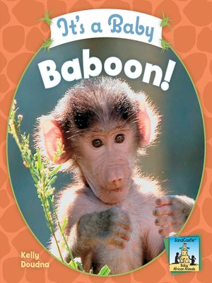 cover image of It's a Baby Baboon!