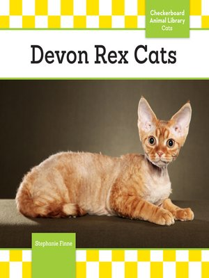 cover image of Devon Rex Cats