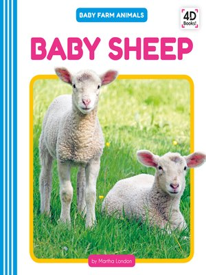 cover image of Baby Sheep