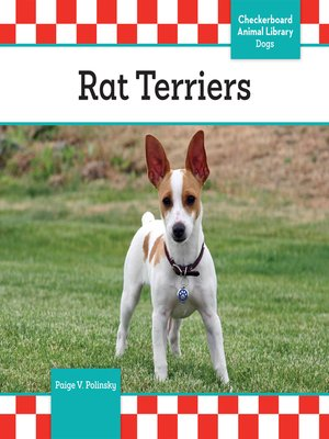 cover image of Rat Terriers