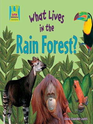 cover image of What Lives in the Rain Forest?