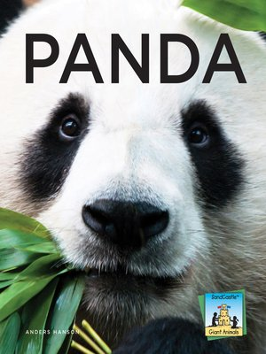 cover image of Panda