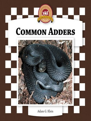 cover image of Common Adders
