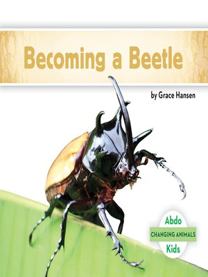 cover image of Becoming a Beetle