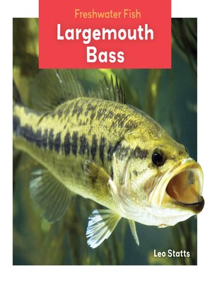 cover image of Largemouth Bass