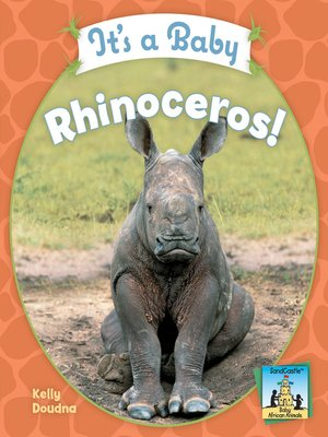 cover image of It's a Baby Rhinoceros!