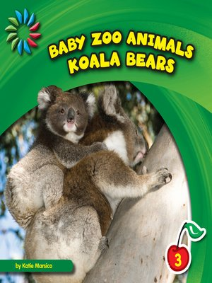 cover image of Koala Bears