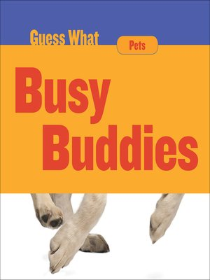 cover image of Busy Buddies