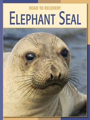 cover image of Elephant Seal