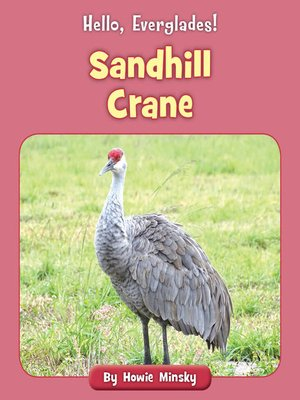 cover image of Sandhill Crane