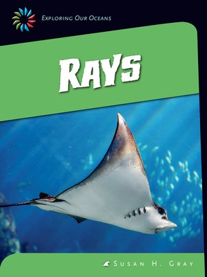 cover image of Rays