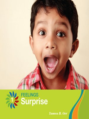 cover image of Surprise